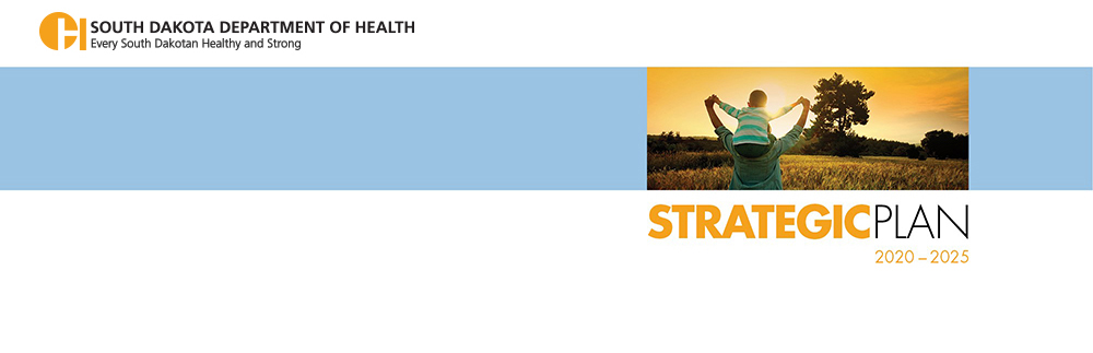 Department of Health strategic plan