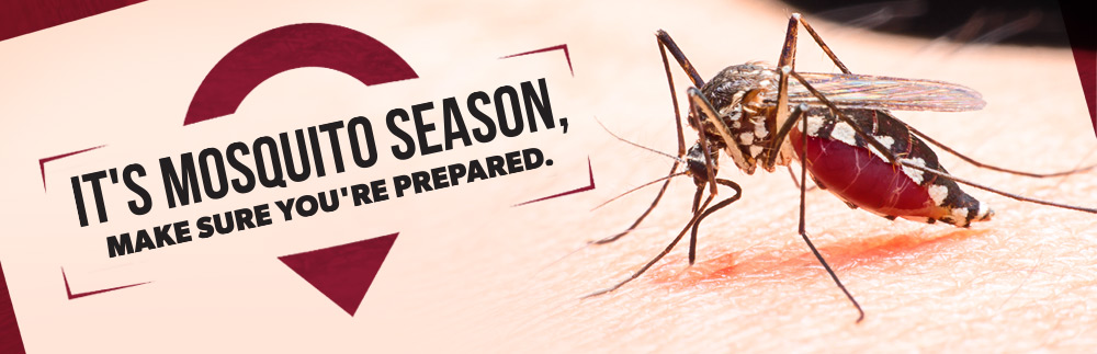 Mosquito season is here - protect yourself